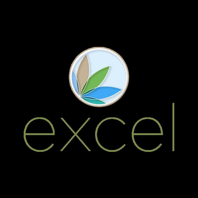 logo-excel
